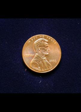 JAV, 1 centas 2006m