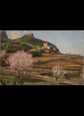 Vokietijos Reichas, Tirolis (Austrija) 1913m atvirlaiškis