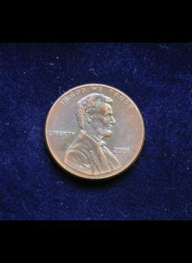 JAV, 1 centas 2001m
