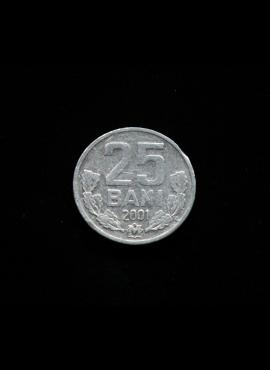 Moldova, 25 baniai 2001m