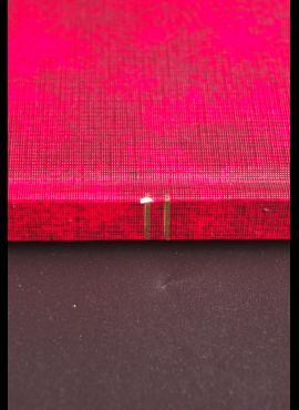 Liuksemburgas, pilna serija ScNr 466-467 MNH**